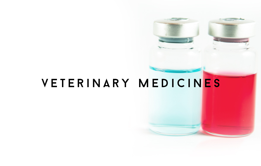 Course Image Supporting the supply of veterinary medicines