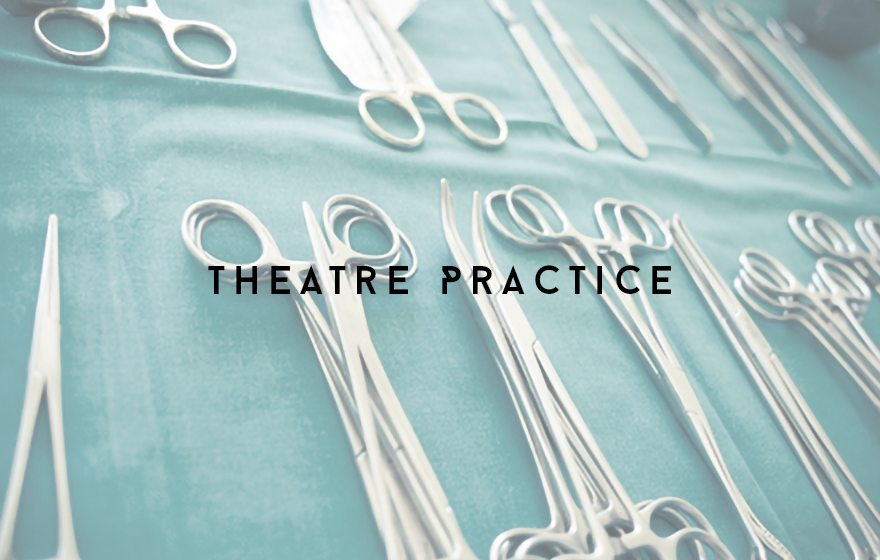 Course Image Supporting veterinary operating theatre practice